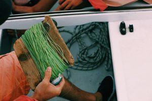Hand line fishing memancing dengan tangan kosong