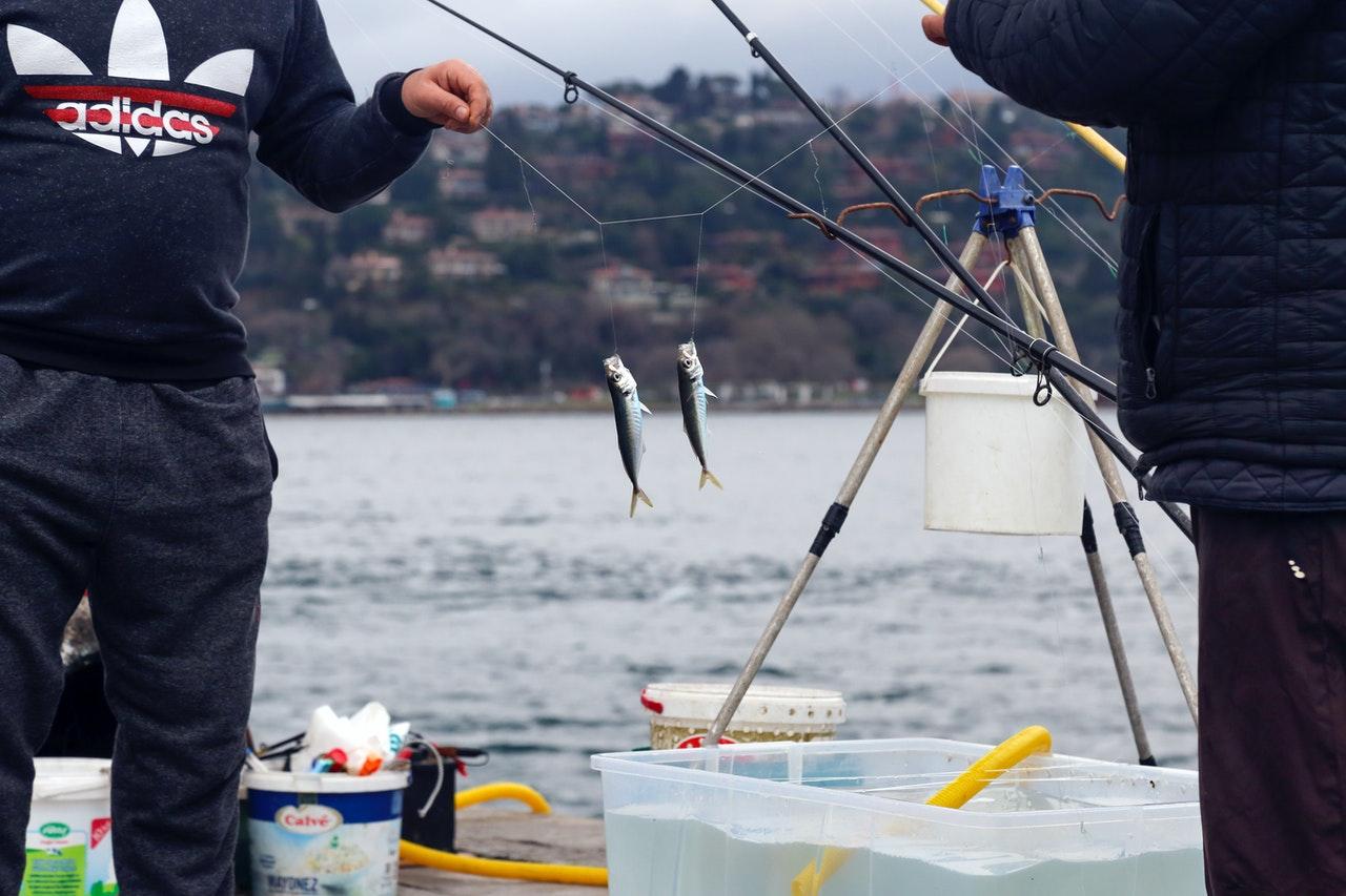 Memancing ikan di dermaga