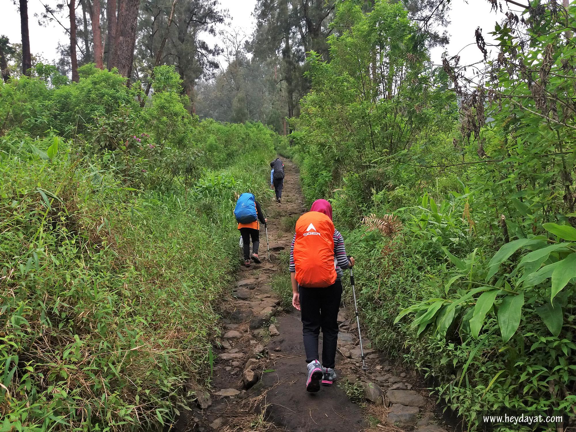 Mendaki Gunung Arjuno via Tretes