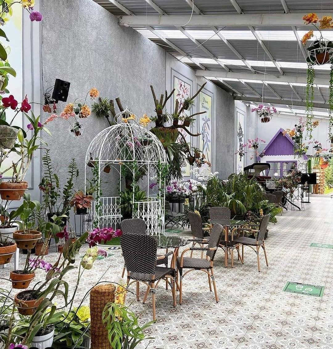 Cafe De Orchid atau Terrace Cafe Batu Love Garden