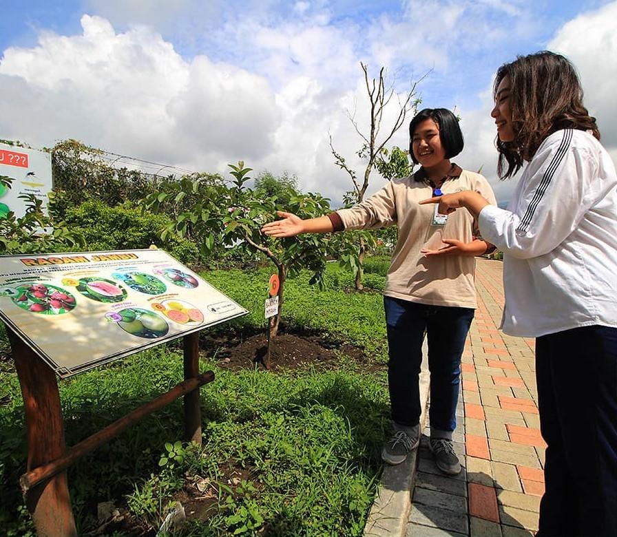 Zona Tropical Fruits Batu Love Garden